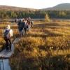 Understanding Our Ecosystems: A Global Effort