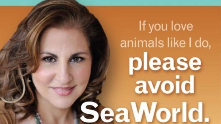Anti-SeaWorld Ad Displays at San Diego International